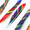 Thumbnail image for worth 1000 words: watercolor feathers diy