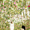 Thumbnail image for fantastical flower rooms