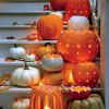 Thumbnail image for worth 1000 words: patterned pumpkins