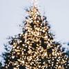 Thumbnail image for happy holidays!