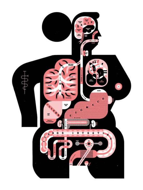 Raymond Biesinger – silkscreened art print – female anatomy on etsy ...