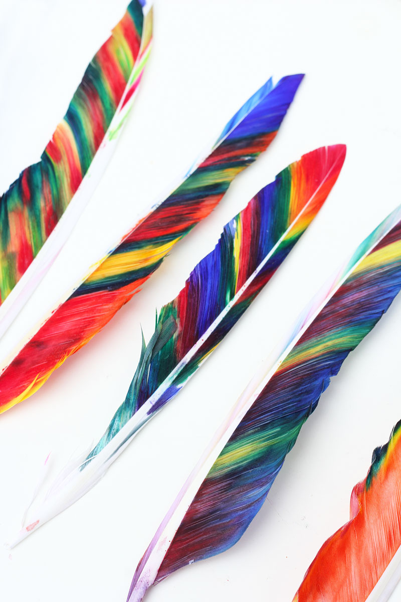 Thanksgiving feather diy holiday crafts for kids for Where can i buy feathers for crafts