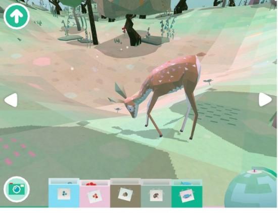 Toca-Nature-deer